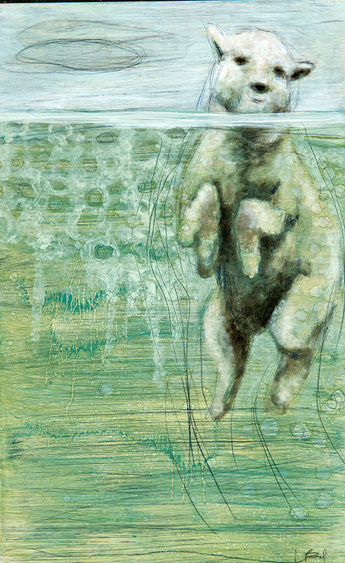 LizBrady_Swimming-Sheep-16x10